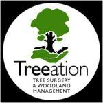 treeation logo